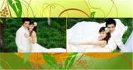 会声:HL-40 动漫花草背景婚纱模板 婚纱婚礼结婚爱情 会声会影特效下载  会声会影模版素材