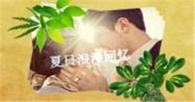 会声:HL-13 浪漫夏日 婚纱婚礼结婚爱情 会声会影特效下载  会声会影模版素材