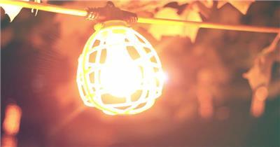 华丽夜晚树林灯泡吊挂散发光芒风吹摇摆变焦拍摄高清视频实拍