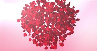 心形花瓣揭示妇女节片头视频模板