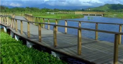 湿地公园建设生态环境绿草大自然实拍