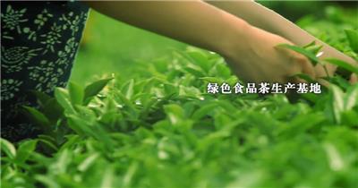 企业宣传片成片 城市宣传片 (35)大气宏伟公司宣传片视频下载免费企业宣传视频模板