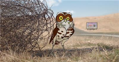 穴居猫头鹰的隐秘生活 The Hidden Life of the Burrowing Owl企业事业单位公司宣传片外国外宣传片