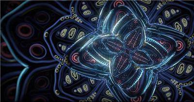 宇宙之花展开1080p Cosmic Flower Unfolding1080P企业事业单位公司宣传片外国外宣传片