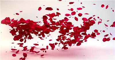 玫瑰花瓣转场Logo动画