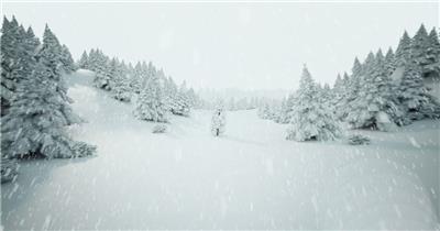 下雪的圣诞树森林下雪的圣诞树森林下雪的圣诞树森林_batch 视频素材下载