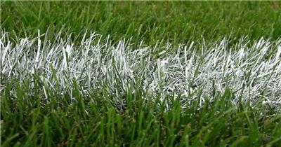 绿色草原体育赛场白色油漆线竞技场界限边界高清视频实拍