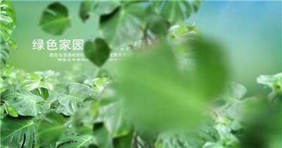 312植树节公益环保2018AE视频模板