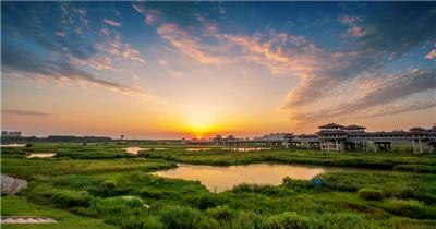 湿地夕阳日落