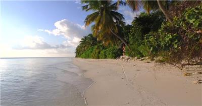 沙滩椰树 款A19132清晨美丽的异国白色沙滩无音乐_batch led视频背景下载