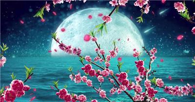 -夜色明月荷花款Y0581唯美月色星空挑花花瓣流星有音乐 led视频素材库