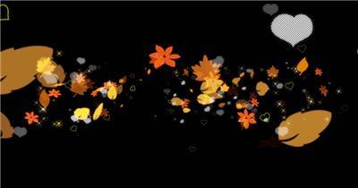 唯美树叶爱心粒子素材2Particles 视频素材下载