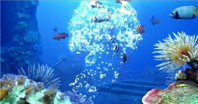 -海底鱼群水母婚礼套----海底鱼海底鱼群水母婚礼水底海洋大海