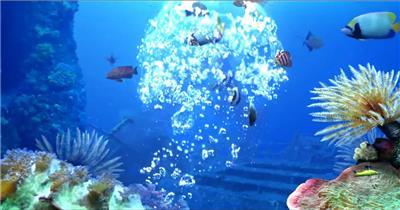 -海底鱼群水母婚礼套----海底鱼海底鱼群水母婚礼水底海洋大海_batch led视频背景下载