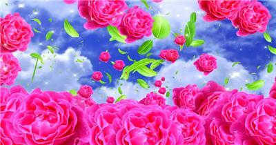 -玫瑰D3295红玫瑰花瓣