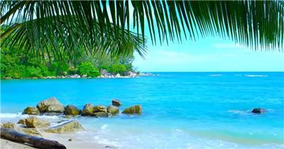 沙滩椰树 款A19131碧水沙滩无音乐_batch led视频背景下载