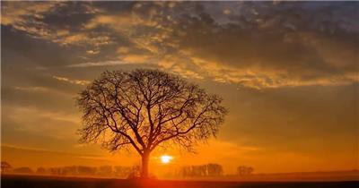 三月草原荒野隔壁日出美景视频