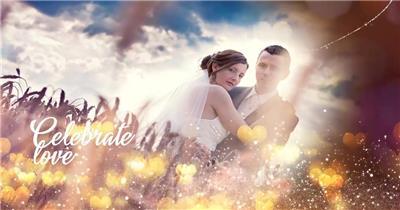 13984 浪漫爱心粒子婚礼照片相册片头ae免费模板素材 ae素材