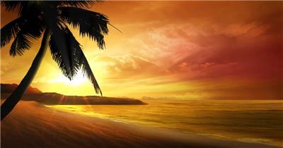 沙滩椰树 款A19113夕阳海滩椰树无音乐_batch led视频背景下载