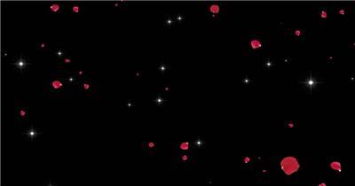 花瓣雨星星雨