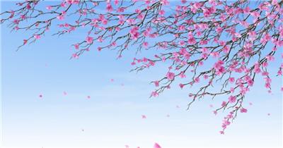 日本的春天 Japanese Spring 春节 新年 新春佳节 过年