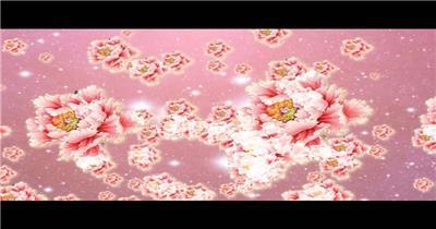 -富贵牡丹系列款Y3605牡丹粒子有音乐 led视频素材库