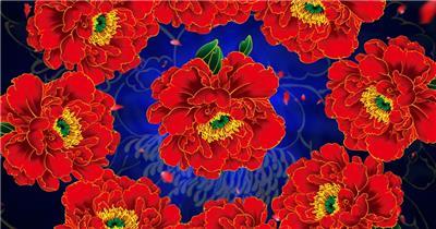 -富贵牡丹系列款Y1699大红牡丹花国花 led视频素材库