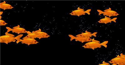 海底世界小鱼游动遮罩素材ribki 大海 海边 海洋