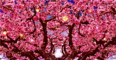 套唯美桃花林 樱花瓣飘落J075桃花