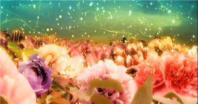 -富贵牡丹系列款Y1172中国风牡丹花开画极品时尚大气 led视频素材库