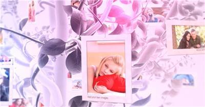 AE:夏天的记忆婚庆儿童家庭相册模板 AE文件 ae素材免费下载14 相片照片 ae素材 幻灯片