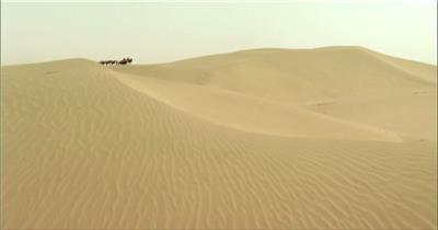 0310-沙漠骆驼队2-沙漠中国实拍视频素材 视频下载中国实拍