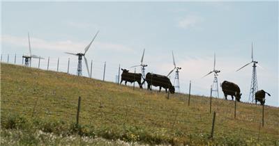 新能源-Energy000731_VTXHD风力发电 清洁能源 风力发电 工业