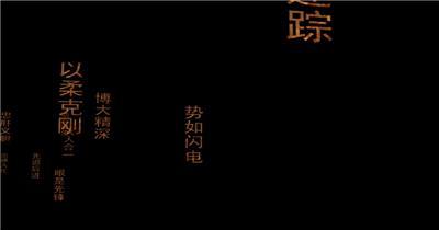 YM0906中国风民族功夫极品武术背景送绝招字2 武术太极八卦 中国风视频 背景视频