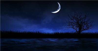 A171-夜晚月亮河水草丛 视频动态背景 虚拟背景视频