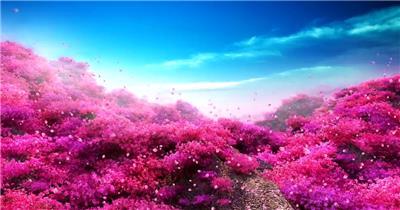 套唯美桃花林 樱花瓣飘落J075唯美桃花林