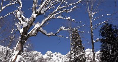 [4K] 雪景 4K片源 超高清实拍视频素材 自然风景山水花草树木瀑布超清素材