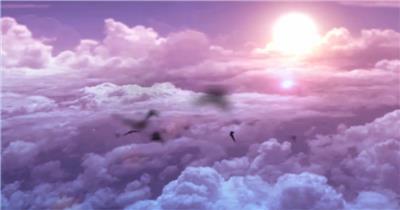 唯美紫霞太阳日出白云云海鸟群飞翔 大屏幕LED高清背景视频素材湖边高山云层星空城市乡村梯田日出日落风景高清实拍视频素材