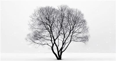 立冬节气中国风山水海报片头AE模板
