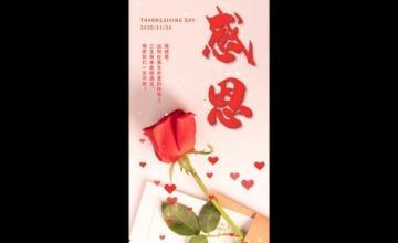 感恩节玫瑰花节日小视频海报